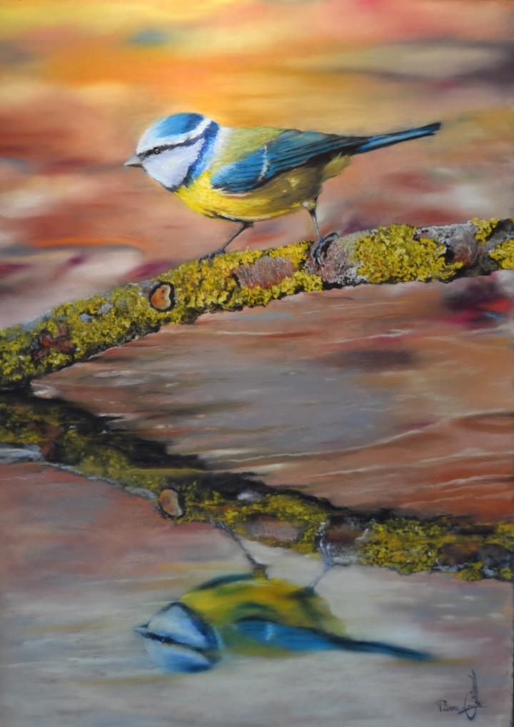 Bleu de messange - 50x70
