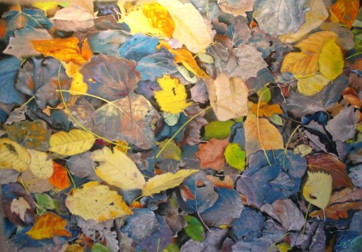 Robe d'automne - 50x65